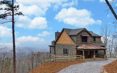 Mineral Bluff Single Family Home For Sale: 1017 Tower Rd