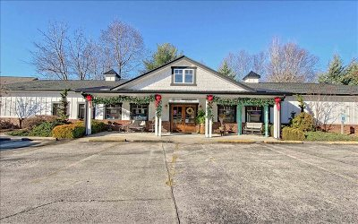 Hiawassee Commercial For Sale: 355 N Main St-Bacchus Wine