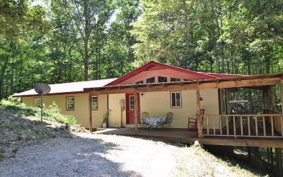 Blairsville Single Family Home For Sale: 975 Timber Ridge Rd