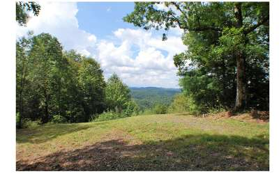 Residential Lots & Land For Sale: Lot 3 Bear Cub Trail