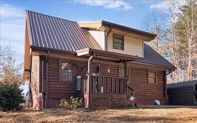 Mineral Bluff Single Family Home For Sale: 407 Douthit Road