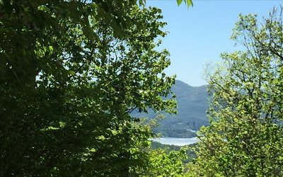 Hiawassee Residential Lots & Land For Sale: 3016 Jump Off Ridge