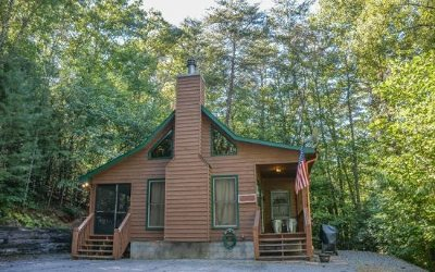 Blue Ridge Single Family Home For Sale: 79 Icy Lane