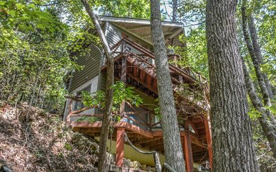 Ellijay Single Family Home For Sale: 236 Whitewater Path