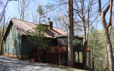 Ellijay Single Family Home For Sale: 48 Courtside