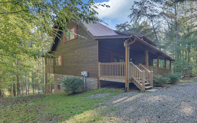 Ellijay Single Family Home For Sale: 239 Reindeer Lane