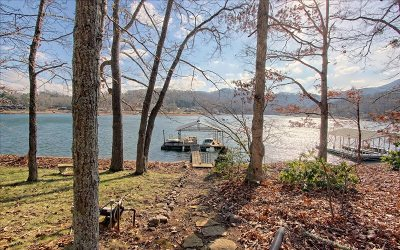Hiawassee GA Single Family Home For Sale: $675,000