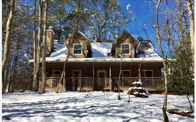 Ellijay Single Family Home For Sale: 678 Villa Drive