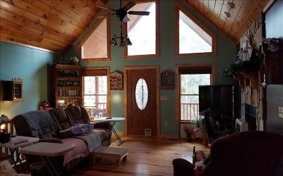 Ellijay Single Family Home For Sale: 712 Nexus Drive