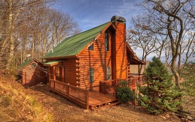 Ellijay Single Family Home For Sale: 372 Mountain View Road
