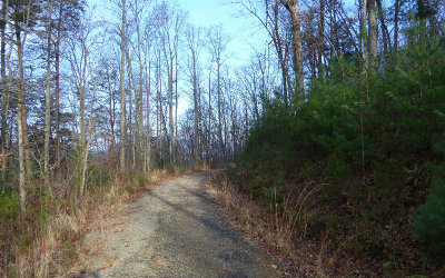 Hiawassee Residential Lots & Land For Sale: Lt 5 Harris Heights