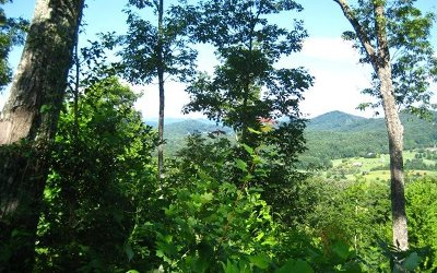 Hayesville Residential Lots & Land For Sale: 36-M Ridges Overlook
