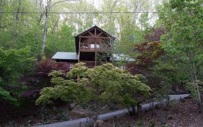 Ellijay Single Family Home For Sale: 231 River Road