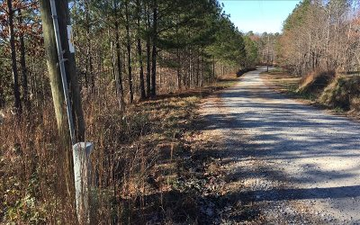Ellijay Residential Lots & Land For Sale: Log Round Mountain R