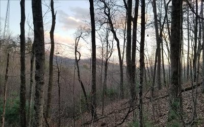 Murphy NC Residential Lots & Land For Sale: $36,500