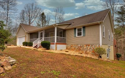 Ellijay Single Family Home For Sale: 468 Bmw Drive