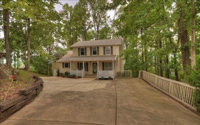 Ellijay Single Family Home For Sale: 1697 Walnut Ridge