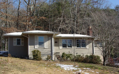 Hiawassee Single Family Home For Sale: 1710 Chatuge Shores Road