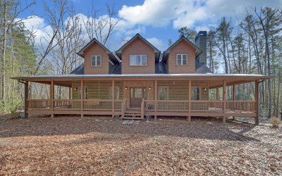 Blue Ridge Single Family Home For Sale: 100 Chief Ron Green Trl