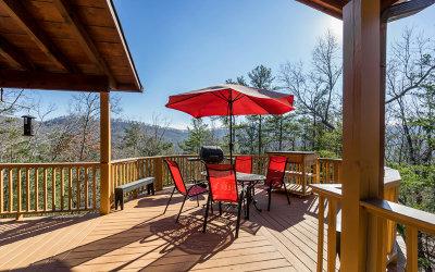 Ellijay Single Family Home For Sale: 317 Laurel Ridge Dr