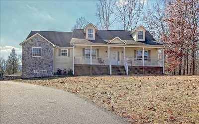 Blairsville Single Family Home For Sale: 238 Tanglewood Circle