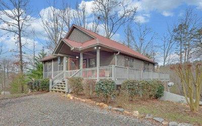 Ellijay GA Single Family Home For Sale: $212,000