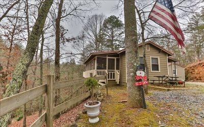 Ellijay Single Family Home For Sale: 1613 Nugget Lane