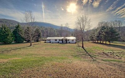 Blairsville Single Family Home For Sale: 5359 Owltown Road