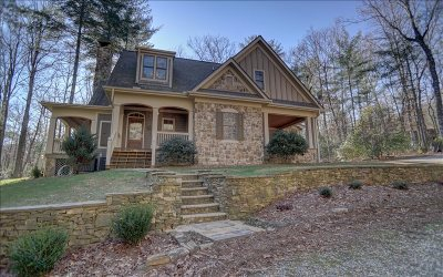 Blairsville Single Family Home For Sale: 167 Chestnut Ridge Road