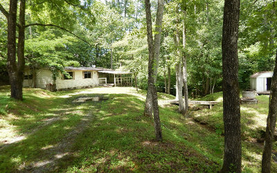 Hayesville Single Family Home For Sale: 3561 Green Cove & Hwy 64
