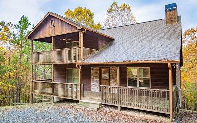Ellijay Single Family Home For Sale: 198 Parody Circle