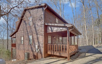 Blairsville Single Family Home For Sale: 50 Hunters Place