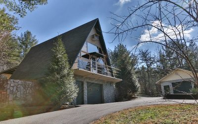Blue Ridge Single Family Home For Sale: 54 Snake Mountain Road