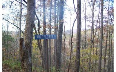 Suches Residential Lots & Land For Sale: Lot 7 Wild Flower Trail