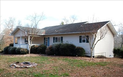 Hayesville Single Family Home For Sale: 173 Tusquittee Laurel Dr