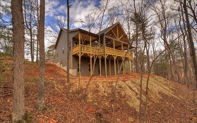 Ellijay Single Family Home For Sale: 2779 Newport Drive