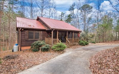Ellijay Single Family Home For Sale: 25 Pinecrest