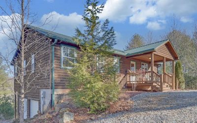 Blairsville Single Family Home For Sale: 401 Gator Alley