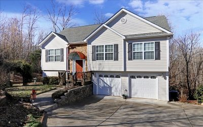 Ellijay Single Family Home For Sale: 173 Birchwood Drive