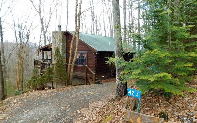 Blue Ridge Single Family Home For Sale: 423 Laurel Creek Road