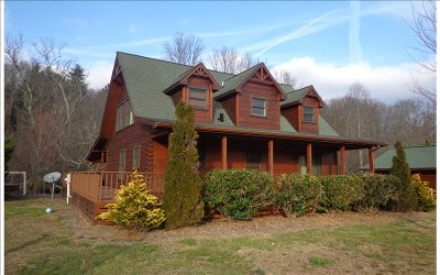 Blue Ridge Single Family Home For Sale: 480 Major Ridge