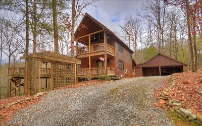 Blue Ridge Single Family Home For Sale: 155 Shayla Drive