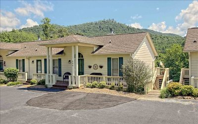 Hiawassee GA Single Family Home For Sale: $325,000