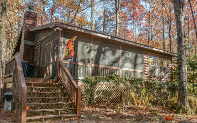Blue Ridge Single Family Home For Sale: 942 Sunrise Valley Road