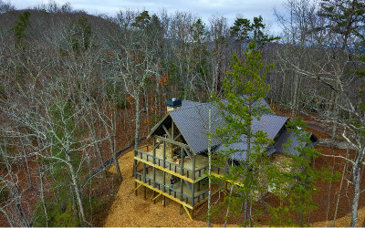 Mineral Bluff Single Family Home For Sale: 1030 Bear Mountain Pass