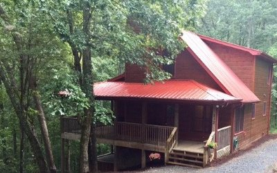 Blue Ridge Single Family Home For Sale: 213 Moonshine Hollow