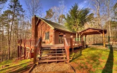 Ellijay Single Family Home For Sale: 21 Omega Ct