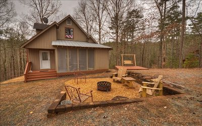 Ellijay Single Family Home For Sale: 668 Lemmon Ln