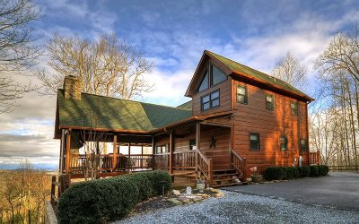 Mineral Bluff Single Family Home For Sale: 146 Unaka Trail