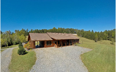 Mineral Bluff Single Family Home For Sale: 7088 Mineral Bluff Hwy